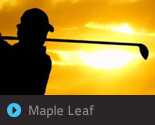 Maple Leaf Website Concepts